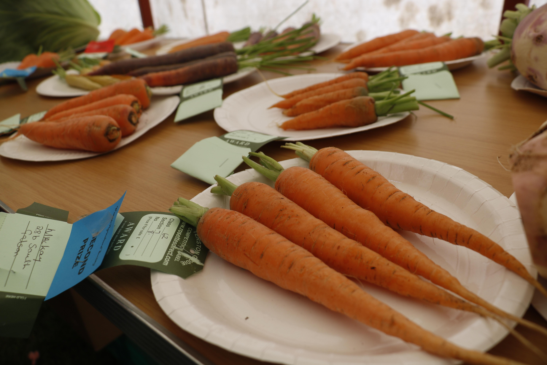 exposition agricole Hébrides Ecosse