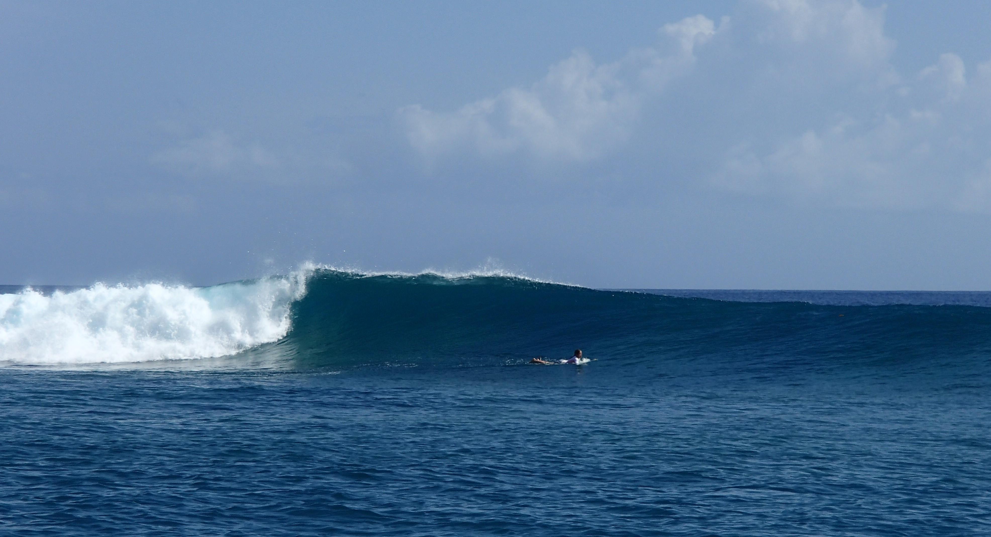 surfeuse tahiti vague