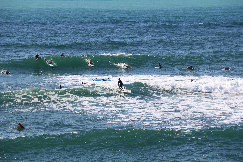surfeuse cenitz droite longboard
